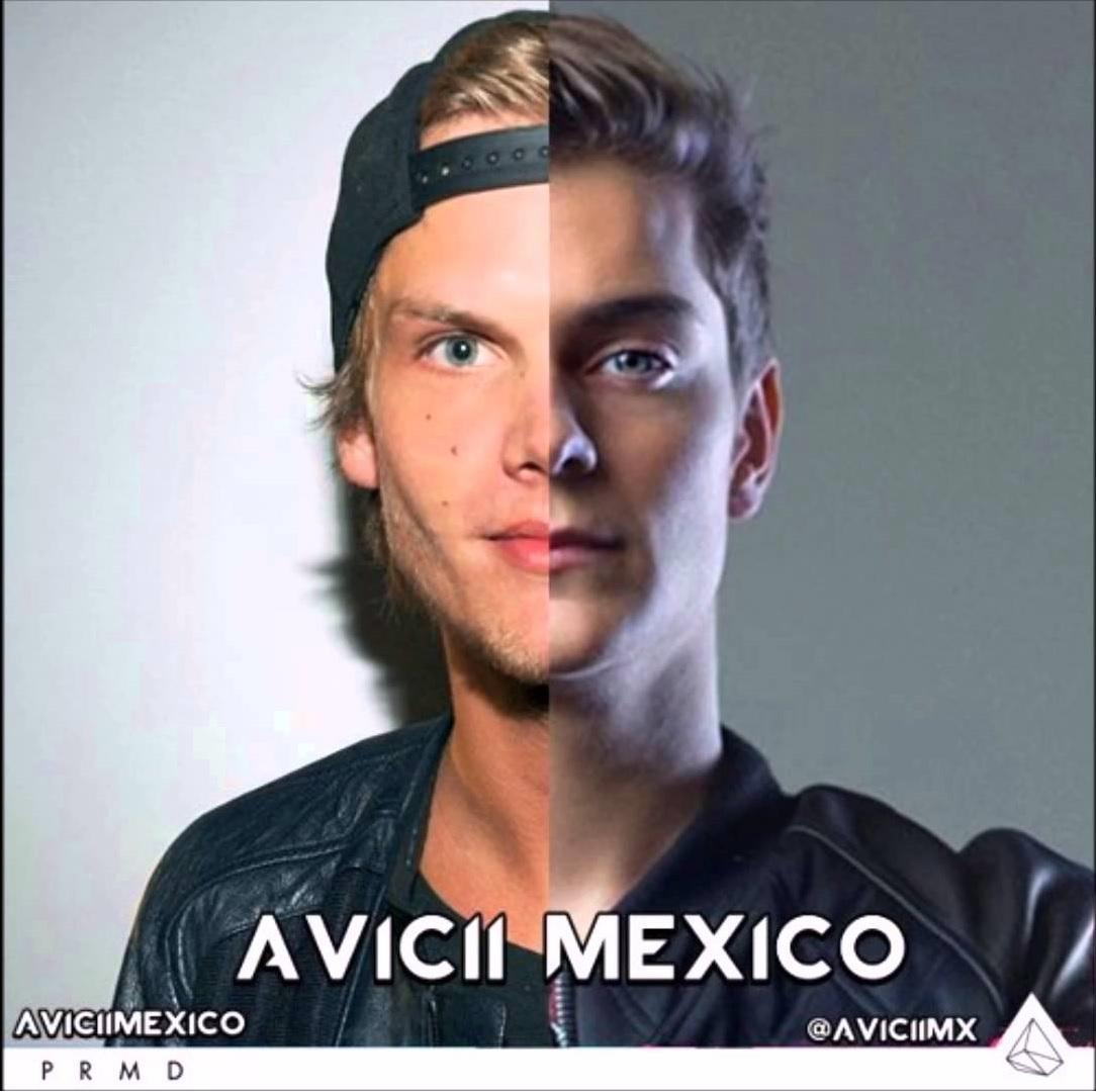 Avicii - Hold On Never Leave Ft. Martin Garrix