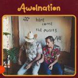 AWOLNATION – Handyman