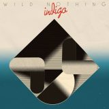 Wild Nothing – Partners In Motion