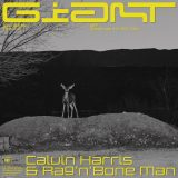 Calvin Harris & Rag'n'Bone Man – Giant