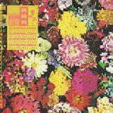 Ra Ra Riot – Flowers