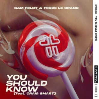 Sam Feldt Ft. Fedde Le Grand & Craig Smart - You Should Know