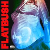 Flatbush Zombies – Afterlife