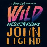 John Legend – Wild (MEDUZA Remix)