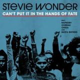 Stevie Wonder – Can't Put It In The Hands Of Fate / Where Is Our Love Song