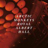 Arctic Monkeys – 505 (live)