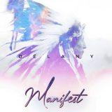 Delany – Manifest