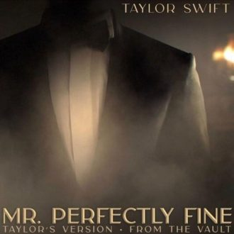 Mr. Perfectly Fine