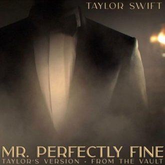Mr. Perfectly Fine